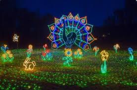 hopeland gardens christmas lights christmas lights in south carolina merry christmas columbia