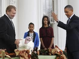 obama pardons thanksgiving turkey tough turkey people have a harder time getting pardons under