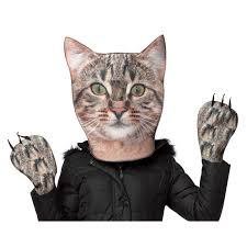 cat costume for halloween cat head u0026 paws costume for adults buycostumes com