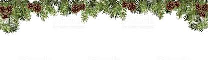 fir tree in a form of a border stock vector