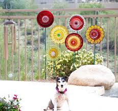 plate flowers for the garden 10 ideas about plate flowers garden