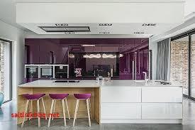 deco cuisine violet meuble de cuisine violet pour idees de deco de cuisine â