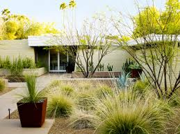desert landscaping ideas from a phoenix front yard sunset