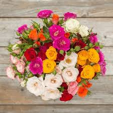 get well soon flowers send get well soon flowers flower delivery the bouqs co