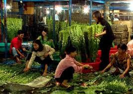 Hanois Nighttime Flower Market