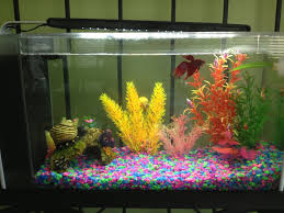 Fish Tank Decorations for Aquarium