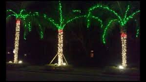 zimmermantreeservice com u003e services u003e holiday lighting