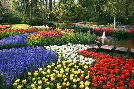 Different Types Of Gardens A Guide To All Types Of Flowers Different Kinds Of Flowers To Know