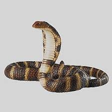 king cobra snake ornament wildlife figurines king cobra snake