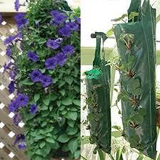 hanging flower strawberry planters for 3 bags bargain offfer