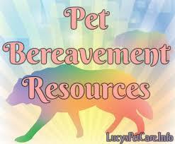 pet bereavement nov wk 1 bereavement pic jpg
