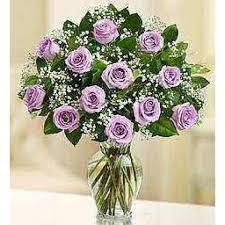 send roses 46 best send roses online images on