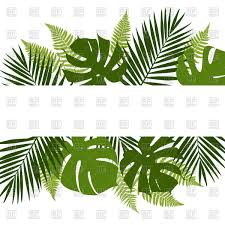 White Flag With Green Leaves Tropical Leaves Background With White Banner Royalty Free Vector