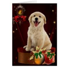 golden retriever puppy greeting cards zazzle