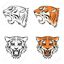 4 894 tiger vector stock vector illustration and royalty free