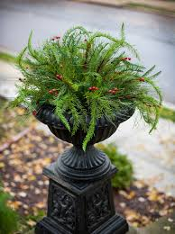 urn filler 4 ways to perk up your winter exterior nell