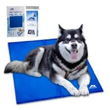 Comfortable Dog Cooling Dog Bed For Husky To Keep Them Comfortable Dog N Treats