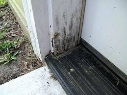 How To Install An Exterior Door Frame How To Replace A Door Frame Front Door Frame Replacement Repair