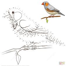 birds dot to dots connect the dots worksheets