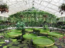 Royal Botanic Gardens Kew Richmond Surrey Tw9 3ab Magnificent Historic Waterlily House Royal Botanic Gardens Kew