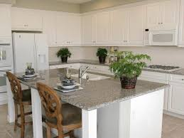 Kitchen Cabinet Paint Colors Ideas by Painting Kitchen Cabinets Color Ideas Cool Backsplash Tray Ceiling
