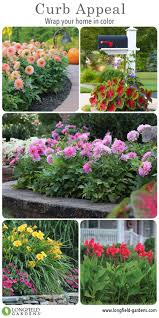 colorful flower gardens 37 best curb appeal images on pinterest curb appeal shade