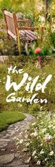 239 best garden dreams ornamental plants images on pinterest