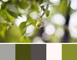 best 25 olive green bathrooms ideas on pinterest olive green
