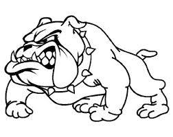 bulldog drawings 100 images bulldog sketch pencil and in