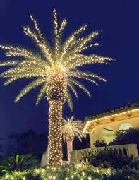 christmas decorated palm trees cheminee website