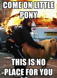 Funny Pony Memes - irti funny picture 1168 tags london riot pony place horse