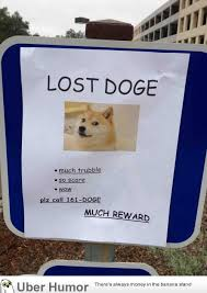 How To Pronounce Doge Meme - no wonder that dog ran away that person is an idiot random