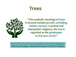 tree symbol meaning exploring nature symbols in religious texts