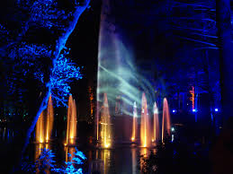 enchanted forest of light tickets the enchanted forest 2014 elemental embrace scotland