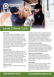 Hair Extensions In Peterborough by Horse Riding Lesson In Peterborough