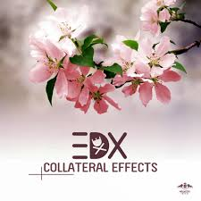 Edx by Edx Finishes 2014 Strong With His Collateral Effects Ep