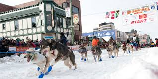 best places to travel over thanksgiving winter activities in anchorage alaska visit anchorage