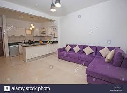 interior design of luxury apartment living room area with american