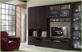 Room Divider Cabinet Room Divider Cabinets Charming Light Tv Divider Cabinet Design