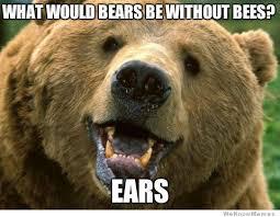 Joke Memes - bad joke bear just makes me chuckle 0 pinterest memes