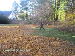 Fall Cleanup Landscaping by Leaf Removal Service Fall Cleanup Wellesley Ma Cullins Service
