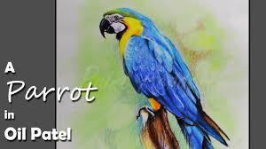 how to paint a parrot in oil pastel youtube