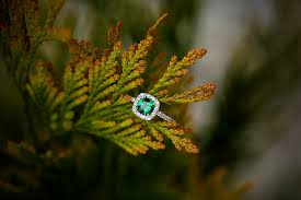 tree branch engagement ring engagement ring free pictures on pixabay