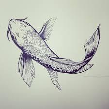 drawn koi carp pen drawing pencil and in color drawn koi carp