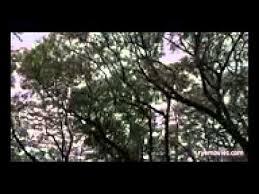 film hantu thailand subtitle indonesia film horror mystery 2015 subtitle indonesia english sub full movies