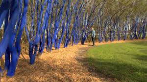 blue trees houston
