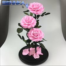 cheapest flowers cheapest preserved flowers cheapest preserved flowers
