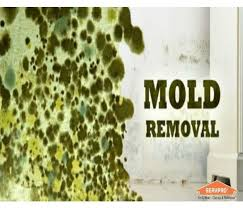 Upholstery Plymouth Ma Water Damage Fire Damage Mold Restoration Services Servpro Of