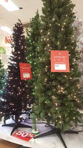 clearance alert 50 trees in store at