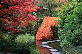 imagenes de jardines japones cómo crear un jardín japonés en casa